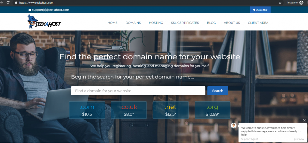 find-a-domain-name-at-seekahost-to-create-a-website