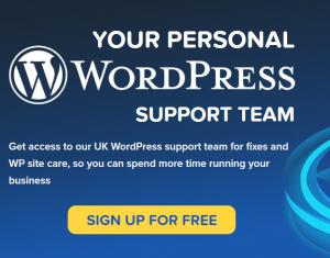 wordpress-support-services