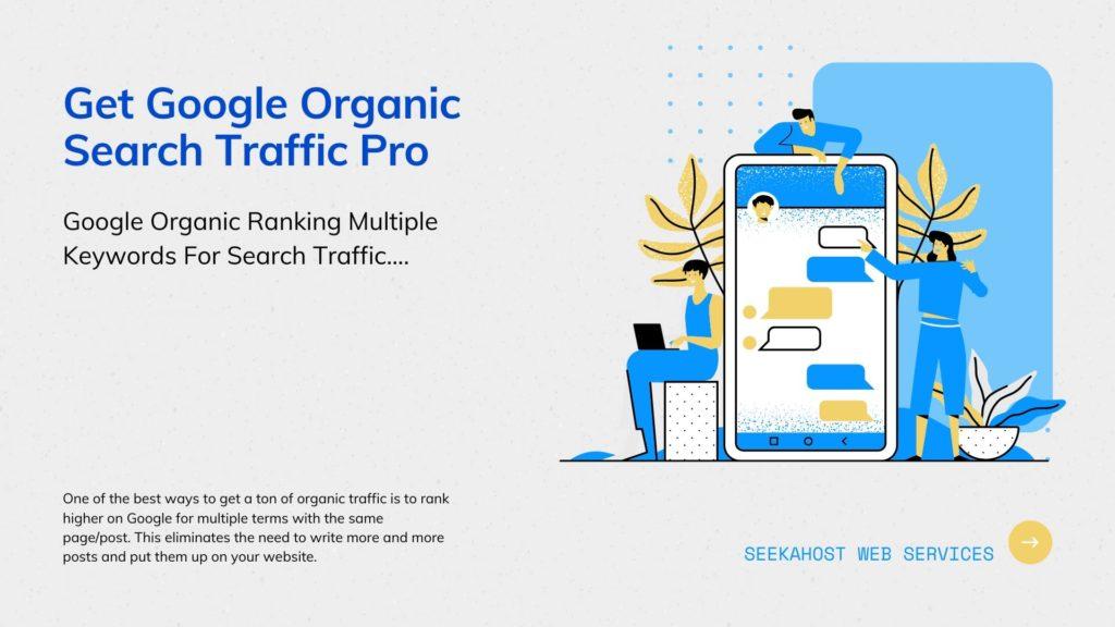 Google-Organic-SEO-Traffic
