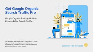 Google-Organic-SEO-Traffic