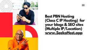 PBN-Hosting-at-SeekaHost.app