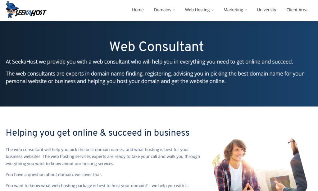 web-consutling-business-model