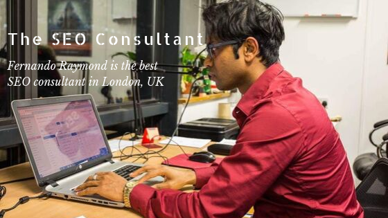 seo-consulting